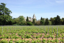 Chateau de la Tuilerie