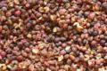 Les Epices Vaucelloises. poivre du Sichuan