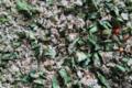 Les Epices Vaucelloises. Sauce aux trois moutardes