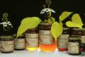 Le miel d'Emeline