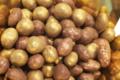 La Chocolaterie du Blason. les Pépites de Saint-Jean-de-Védas
