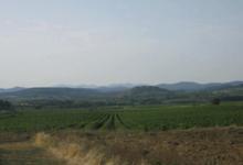 Domaine de Montazellis