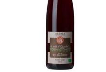 Cave Du Roi Dagobert. Pinot Noir Bio