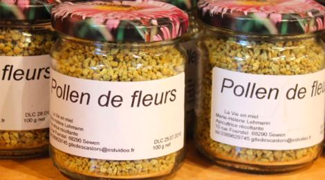 La vie en miel. Pollen de fleurs