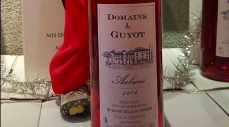 Domaine De Guyot. Aubuns