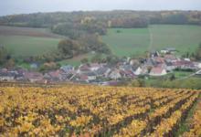 Champagne Michel Michaux
