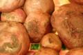 Légumes et saveurs. Betterave cuite