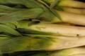 Légumes et saveurs. Poireaux