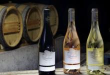Domaine de Lachaux. Pinot noir fût de chêne