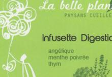 La Belle Plante. Paysans cueilleurs. Infusette digestion
