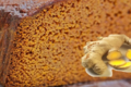 La Nougaterie Cévenole. Pain d'épice gingembre