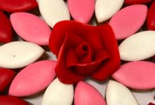 Amandeous. L'amour du chocolat et du fruit depuis 1985.