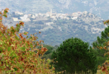 Domaine Orsini