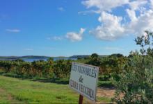 Domaine Terra Vecchia - Clos Poggiale