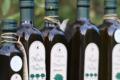 Domaine de Marquiliani. Huile d'olive vierge extra extraite à froid