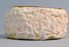 Fromagerie Ottavi. Fior di corsica