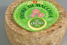 Fromagerie Ottavi. Fior di Macchia