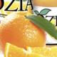 Jus Ozia. Le jus d'orange