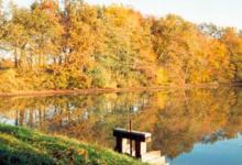 Pisciculture Du Marais