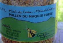 Carasciale Miel de Salice. Pollen du maquis Corse