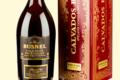 Distillerie Busnel. Calvados Pays d'Auge AOC 12 ans magnum