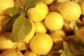 U Poghju. Citron