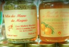 Miellerie Marchioni. Pollen des fleurs du maquis