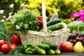 Les Paniers de Valérie. L'ortu di Biguglia. Panier de légumes