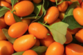 Grandi Fruits et légumes. Kumquat
