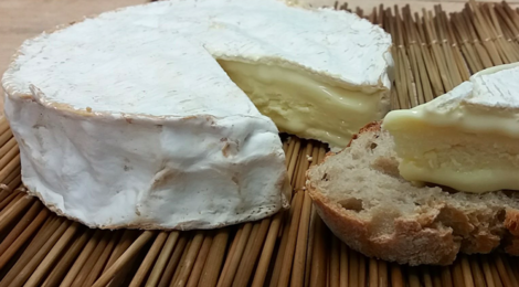 Ferme Sainte Colombe. Le Coulommiers fermier au lait cru.