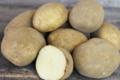 Gaec Antoinet, Pommes de terre Anaïs