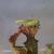 Sarracenia-et-sauterelle