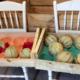 La ferme du Colombier. Melons