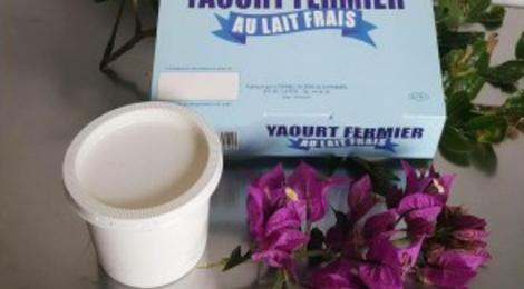 La Ferme Laitiere De Sarramea. yaourt fermier