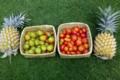 Ferme Permacole de Tipapa. Ananas