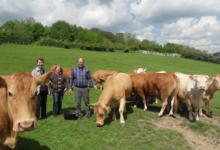 Chantal et Bruno Saison. Viande bovine