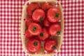 Cueillette du Tronquoy. Tomates rondes