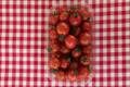 Cueillette du Tronquoy. Tomate cerise