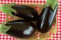 Cueillette du Tronquoy. aubergine