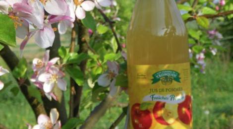 Cueillette du Tronquoy. jus de pommes