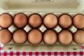 Pascal Buirette. œufs fermiers plein air