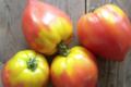 El bio Gardin. Tomates Cœur de boeuf bio