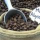 Maison Vayez torréfacteur. ABYSSINIE, café Moka Sidamo
