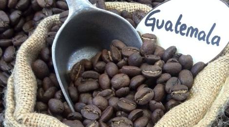 Maison Vayez torréfacteur. GUATEMALA, café 100% arabica