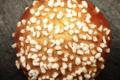 Boulangerie Utopie. Brioche au sucre
