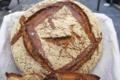 Boulangerie Terroirs d'Avenir. Barbu du Roussillon