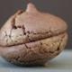 Maison Roux. Macaron au cacao