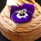 Noglu. Tartelette chocolat-amandes