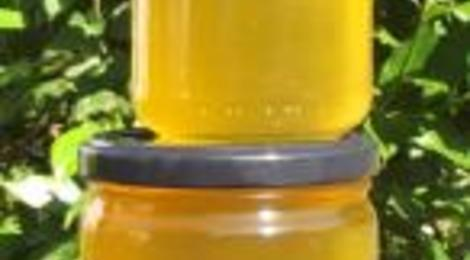 Miel de printemps - Pots de 250grs ou 500 grs