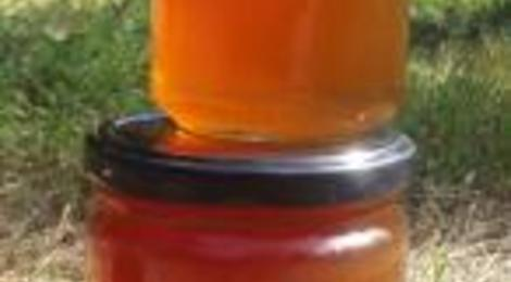 Miel de forêt - Pots de 250grs ou 500 grs
